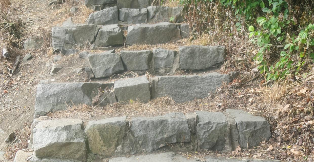 the stone steps on the Carpenters Trail as it climbs the cliffs of the Palisades Interstate Park. Photo by Daniel Chazin
