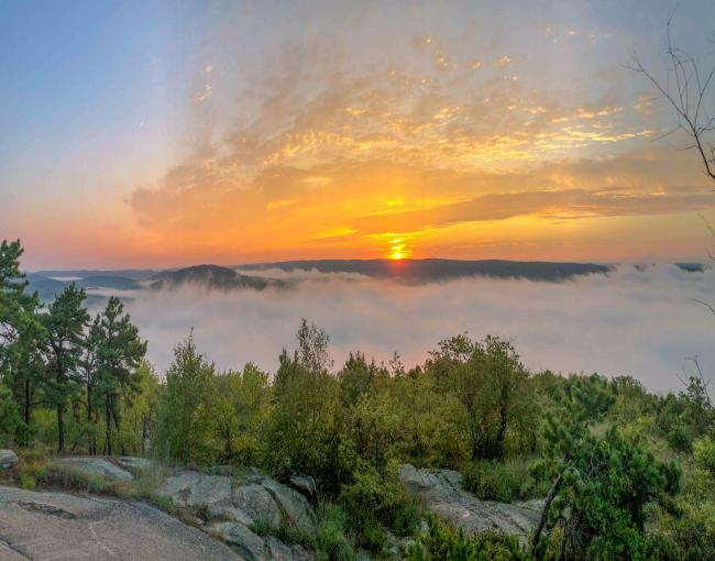 Wyanokie Sunrise at Norvin Green State Forest. Photo by Heather Darley.