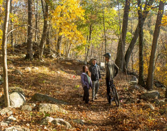 Hikers and Mountain Biker meet on Sterling Forest's multi-use trails. Photo by Robert Celestin.